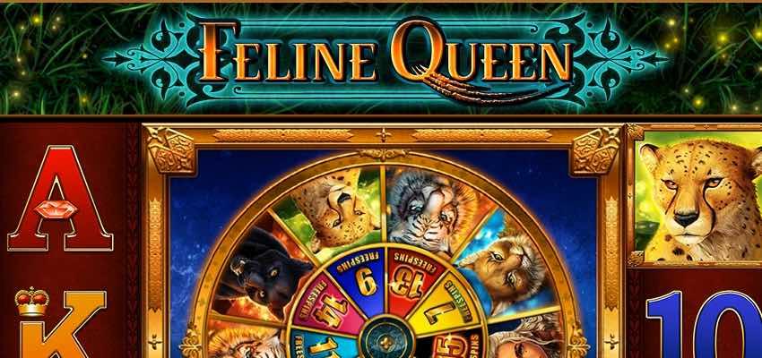 Feline Queen von Bally Wulff